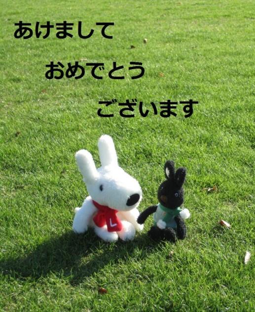 076_60_1aaa.jpg